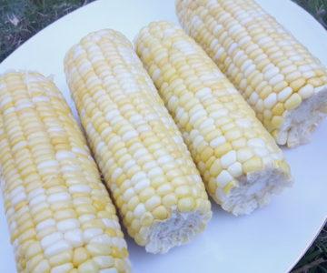 Foto von gekochten Maiskolben