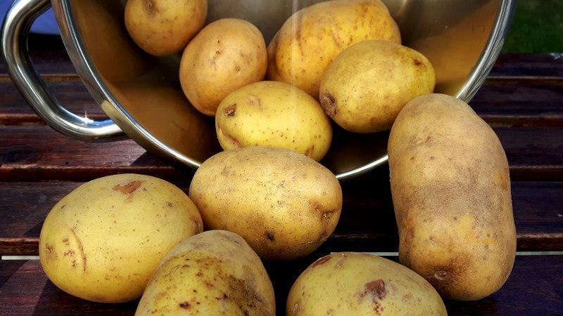 Foto von Kartoffeln