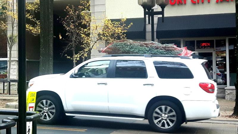 Foto von Auto beladen mit Tannenbaum