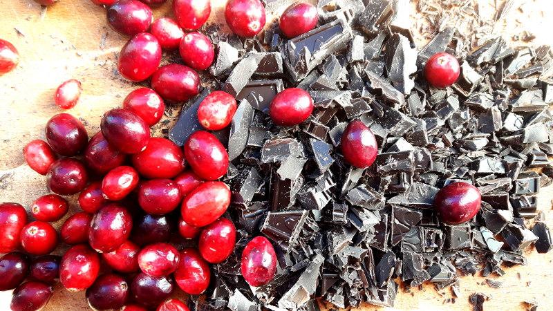 Foto von Cranberries und Schokolade