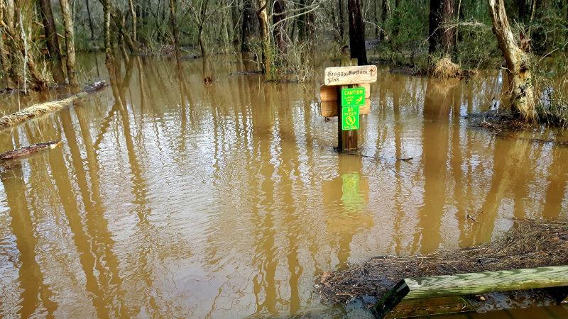 Foto von überschwemmten Wegen